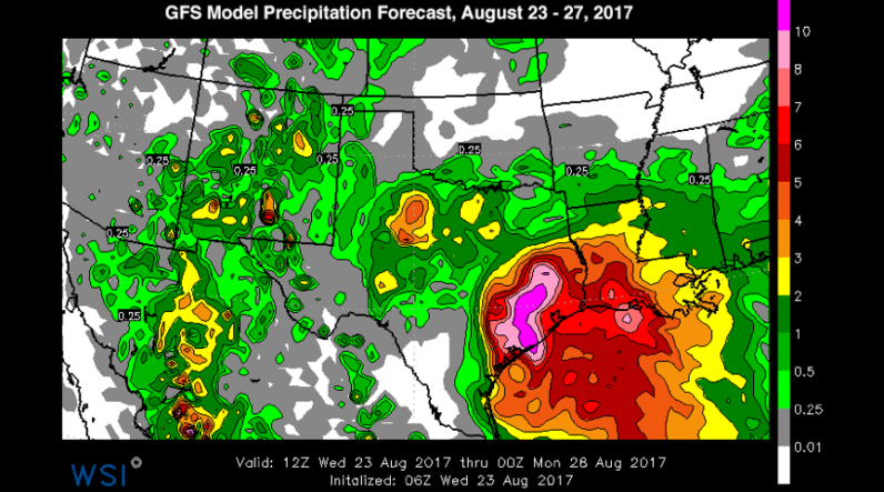 Hurricane harvey rain wsi