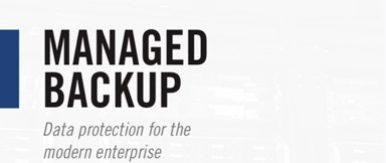 Bg img card managed backup brochure